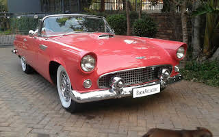 Ford Thunderbird Rent Gauteng