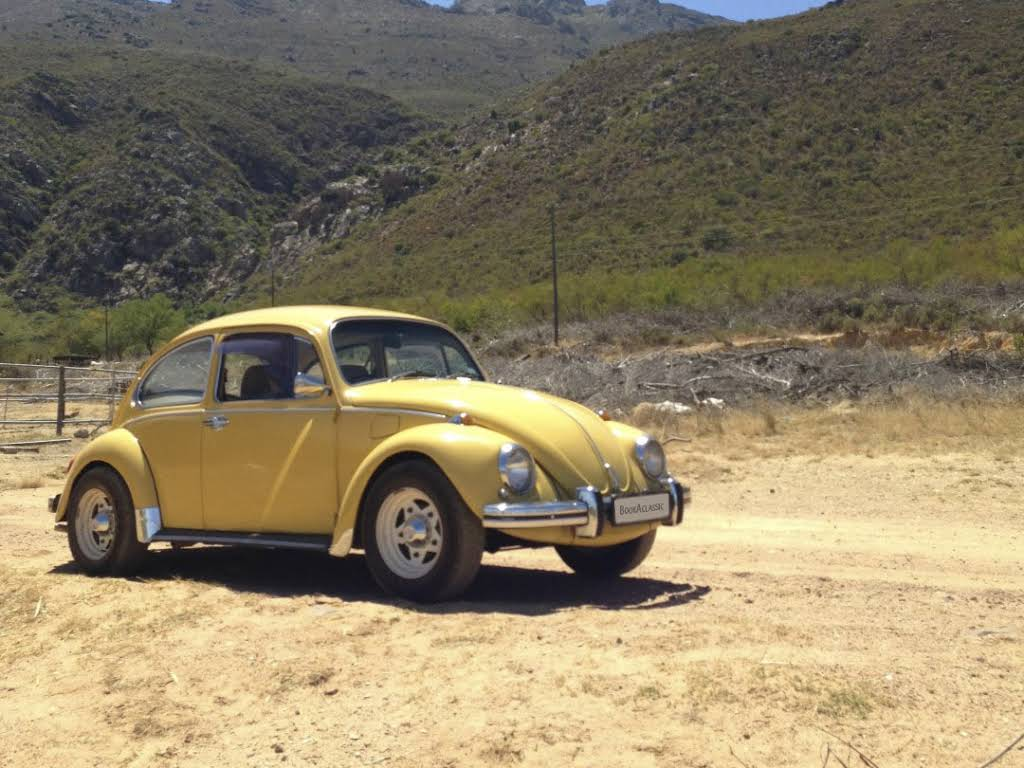 1972 Volkswagen Beetle for rent in Western Cape Hire Cape Town